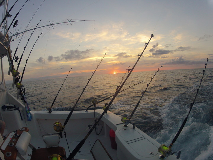 Manasquan inlet charter fishing taylor jean sport fishing for Manasquan inlet fishing